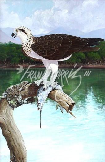 (Y396) Estuary Stillness (Osprey) 89 x 58 cm
