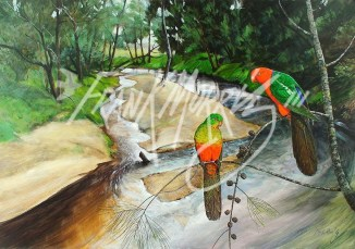 (Y480) King Parrot Creek 71 x 101 cm $900