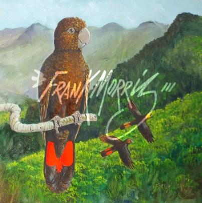 (Y784) Glossy Black Cockatoos 30x30 cm $265