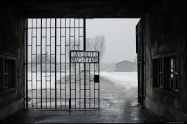 20140202_Sachsenhausen_278_M_web