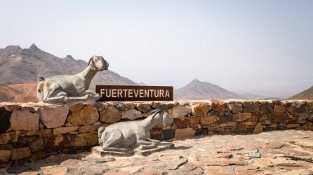 20160804-fuerteventura-01774_web