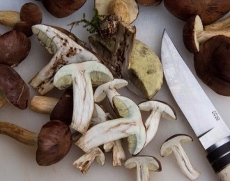 Mushrooms_food_trends_2018