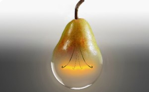 a light bulb and pear merged