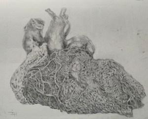 cardiac sketch of blood vessels franscienceart