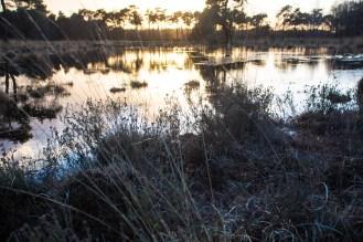 Imagemaker, location scout, Team_Mapito_Wetlands_MoodsNLD-105