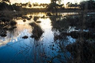Imagemaker, location scout, Team_Mapito_Wetlands_MoodsNLD-106