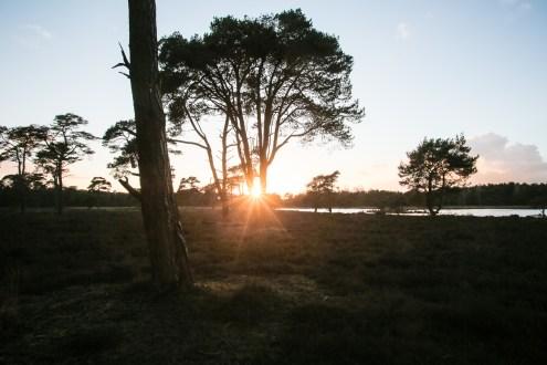 Imagemaker, location scout, Team_Mapito_Wetlands_MoodsNLD-128