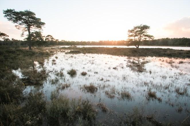 Imagemaker, location scout, Team_Mapito_Wetlands_MoodsNLD-131
