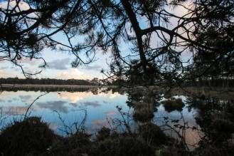 Imagemaker, location scout, Team_Mapito_Wetlands_MoodsNLD-83