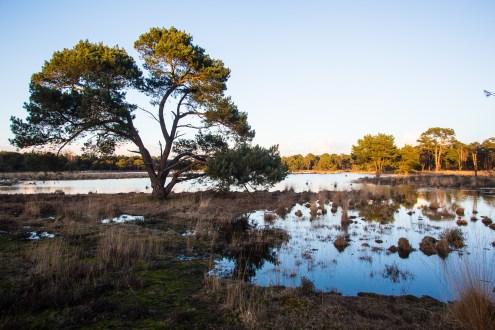 Imagemaker, location scout, Team_Mapito_Wetlands_MoodsNLD-99