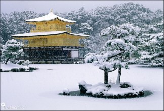 japan-kinkakuji-winter-04