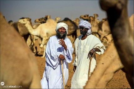 Camel market, Khartoum, Sudan
