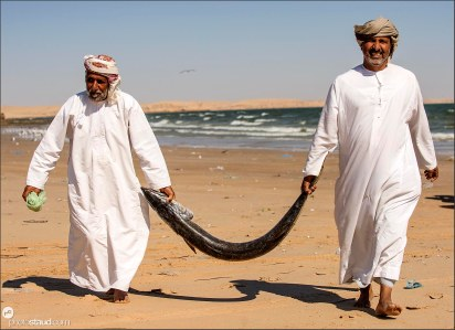 Fishermen and barracuda, Oman