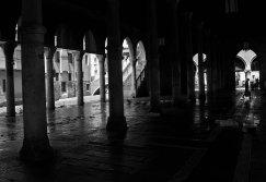 _MG_0349 ©franvirues