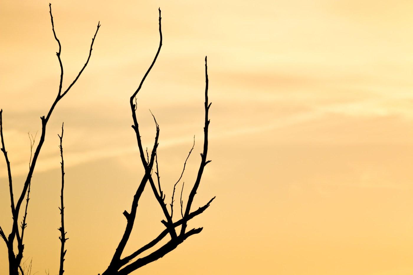 Abstract Sunset, Woolgoolga - Franzi Photography