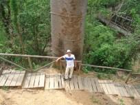 tour puyango bosque petrificado dos franz merino
