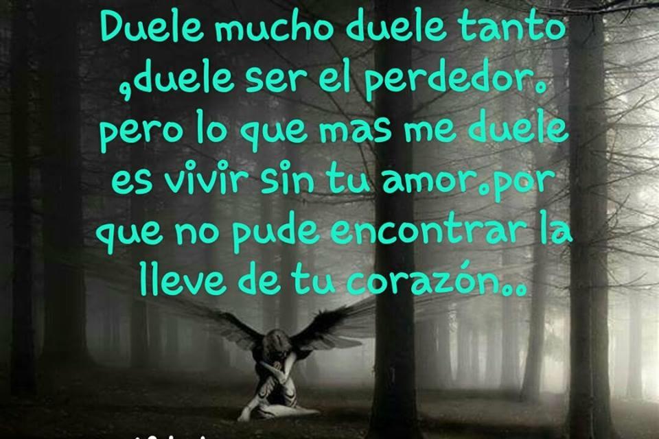 Duele Vivir Sin Tu Amor Frasespw