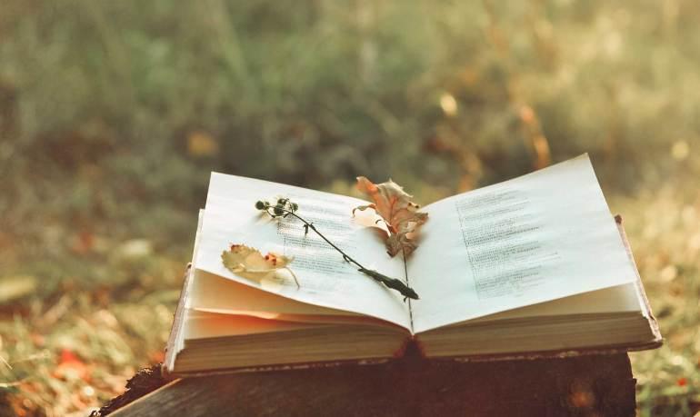 100 Frases de poesía que exploran la esencia de este arte
