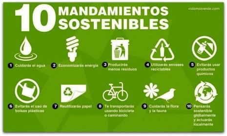 Consejos para cuidar el Medio Ambiente  FrasesHoyorg