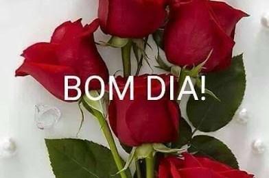 Frases de bom dia com rosas vermelhas