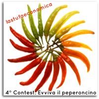 peperoncino_contest