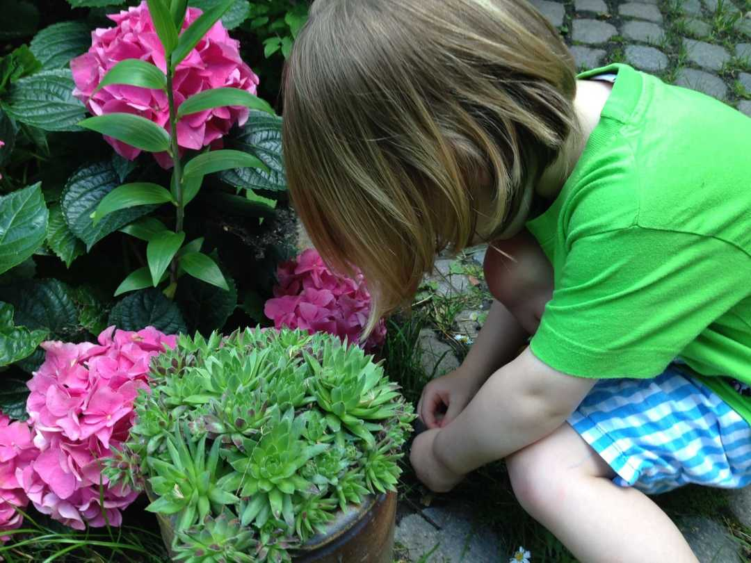 Garten Kinder frau mutter blog 1