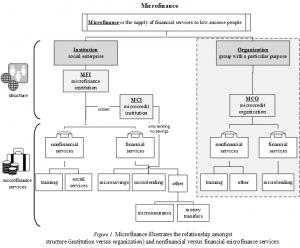 Figure 1 - Microfinance