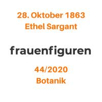 44/2020: Ethel Sargant, 28. Oktober 1863