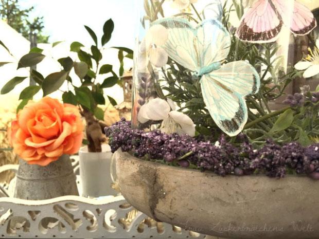 Fruhlings Deko Kleine Schmetterlingswelt Auf Dem Balkon Frau