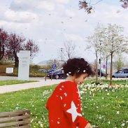 Blütenregen...