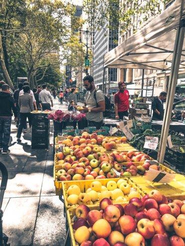 New York Food Markets_City Hall Green Market6