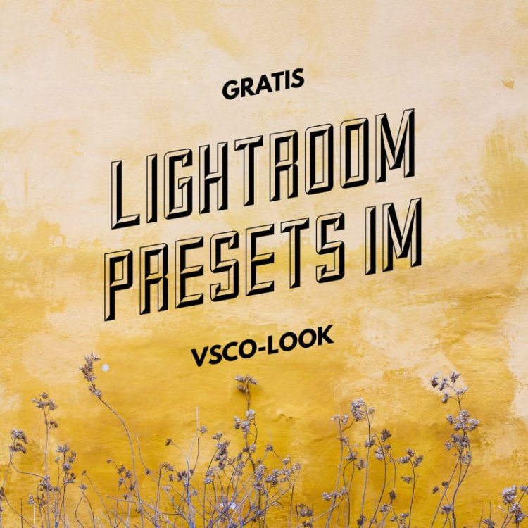 gratis lightroom presets im vsco look