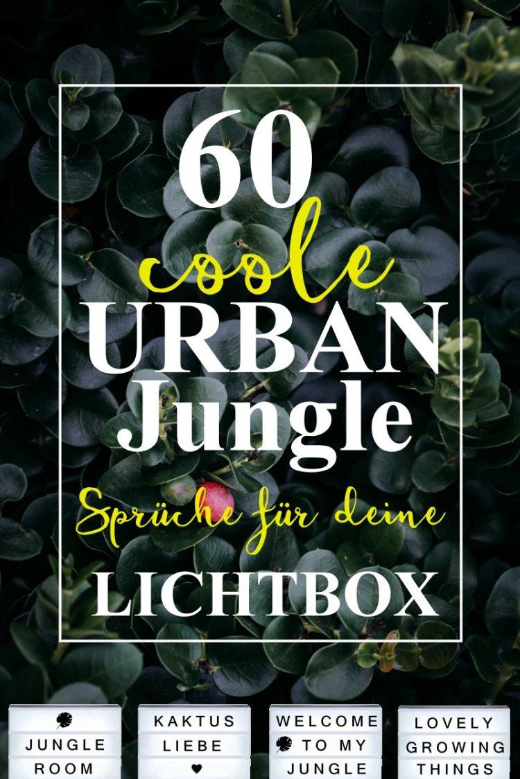 60 coole urban jungle sprüche für deine Lichtbox.jpg