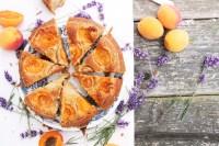 Aprikosen Kuchen In Springform