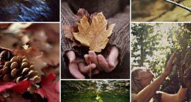 Slanci d'autunno ed equilibrio emotivo
