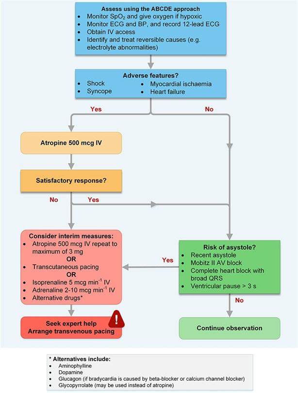 Bradycardia – Frcem Exam Forum