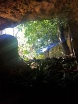 Grottes_Drach_ (27)