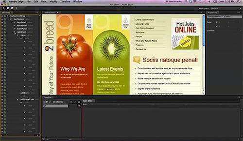 Adobe_Edge