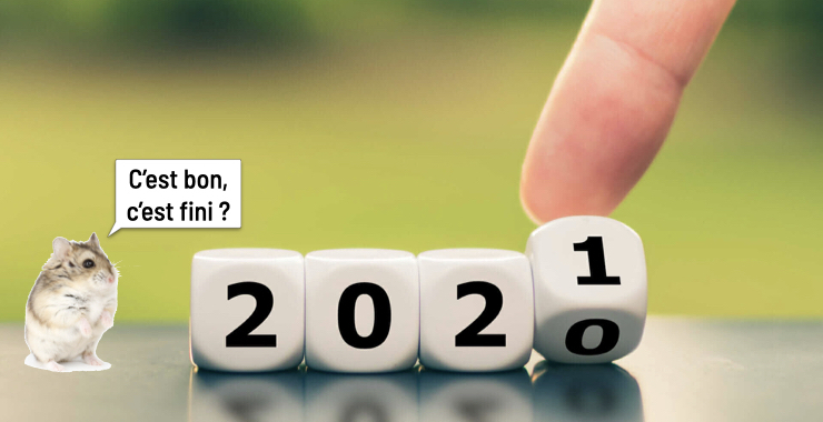Rétrospective 2020 et projets éditoriaux 2021