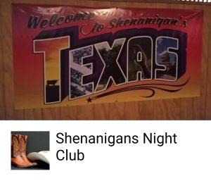 shenannagins logo