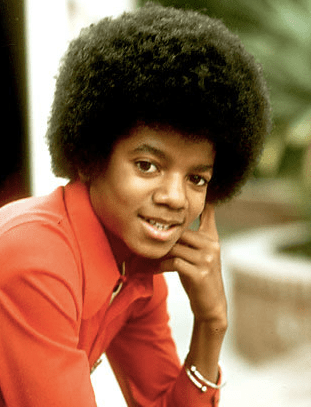 Michael Jackson with an afro that looks like a flower hairstyle