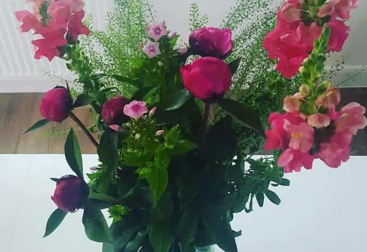 Freddies Flowers Subscription Box