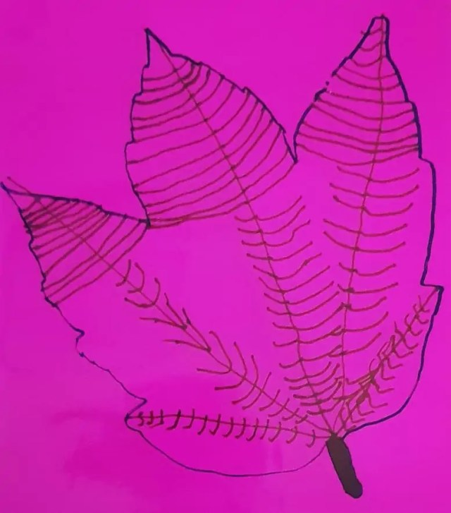 pink paper drawing round a leaf