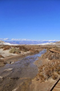 Salt Creek, Death Valley