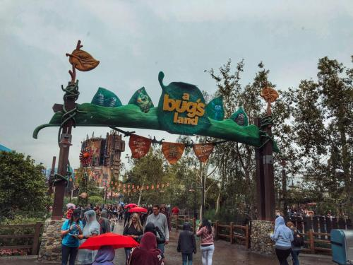 Entrance to A Bug's Land at Disney California Adventure