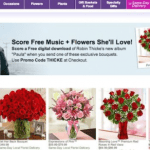 Robin Thicke Partners with 1-800-Flowers for Bouquet Named After Songs!