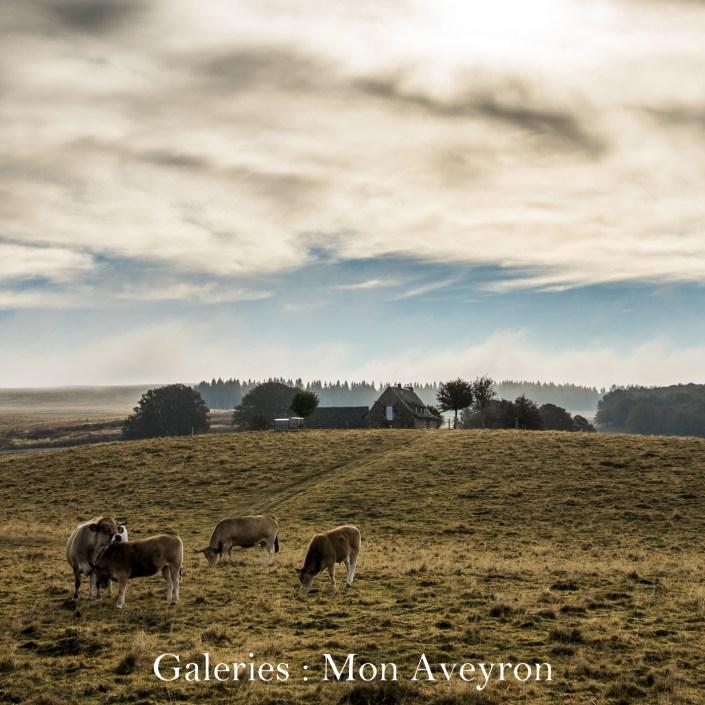 Cliquez ici pour accéder aux galeries : Mon Aveyron