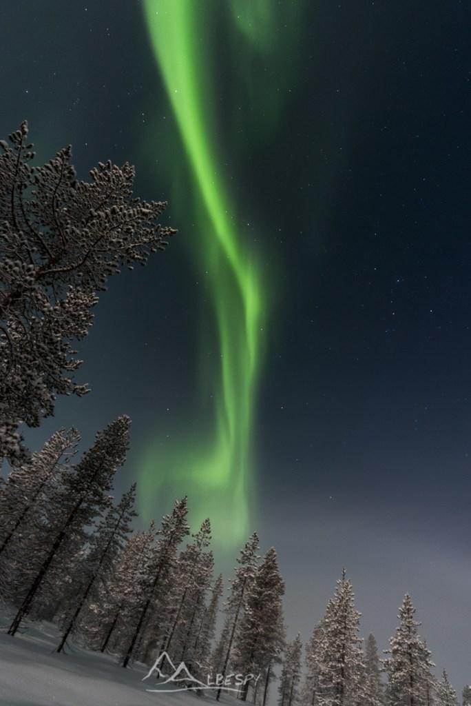La ligne verte (Hetta - Finlande) n°0910