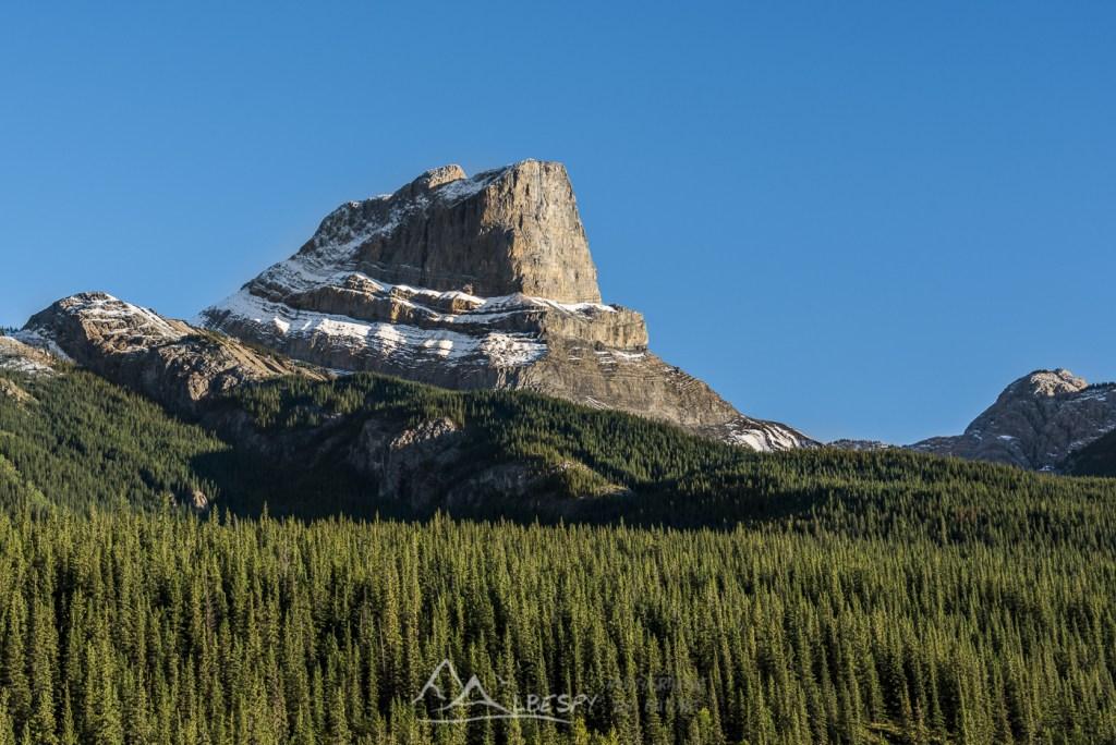 Roche Miette (Parc National de Jasper - Alberta) n°0612
