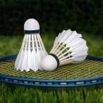 badminton-1428047_1920